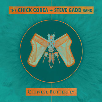 Chinese-Butterfly.jpg