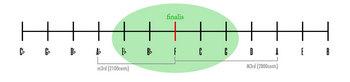 quasi-equidistant_micro1.jpg